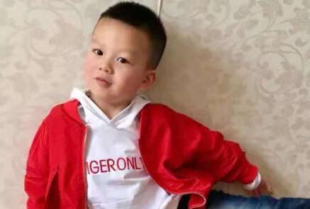 淚目!這個8歲男孩最後的饋贈挽救了3條生命