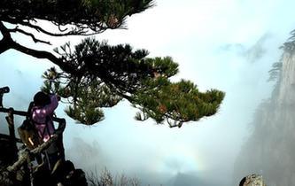 安徽黃山現雲海佛光景觀
