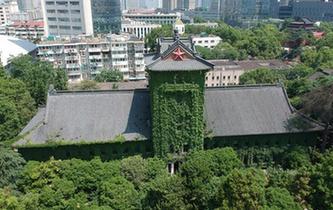 南京高校爬山虎滿墻綠意盎然
