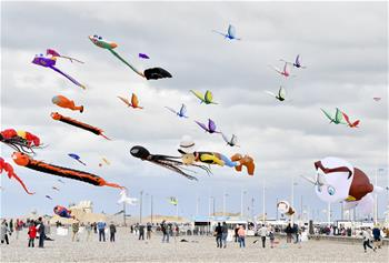 法國舉行迪耶普風箏節