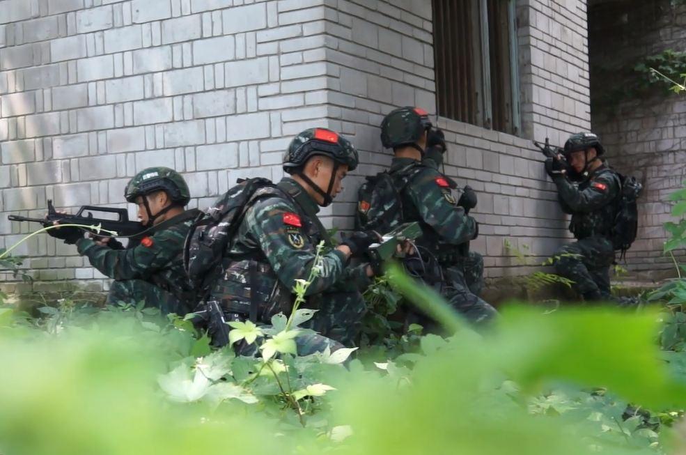 重慶武警開展山地捕殲演練 提升反恐作戰技能