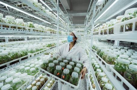 信融財富呂劍:普惠金融為中國經濟的供給側改革注入強大生機