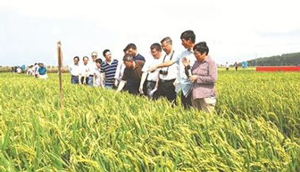 海南農發行:推動政策性金融扶貧高質量發展