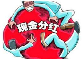 新华百货董事会否决10亿巨额现金分红的临时提案