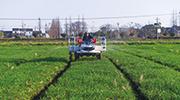 浙江湖州:機械化種田,新農人顯身手
