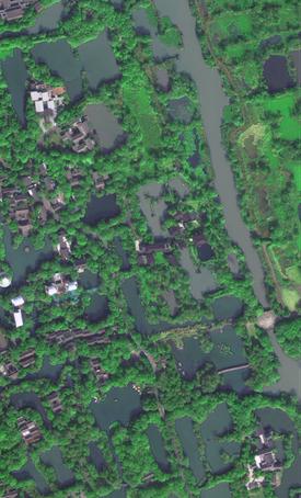 衛星見證,濕地的力量