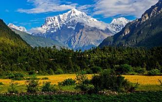 珠峰後花園吉隆溝 一景看四季