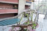 河源恐龍博物館