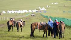 """新疆:馬背上的""""生態致富路"""""""
