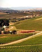 幹旱影響澳大利亞農業