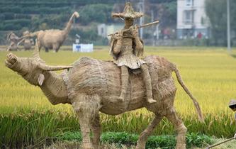 富陽:創意稻草人亮相稻田