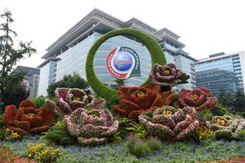 北京街頭靚麗花壇迎盛會