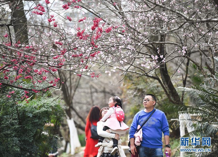 (社会)(2)畅享春光
