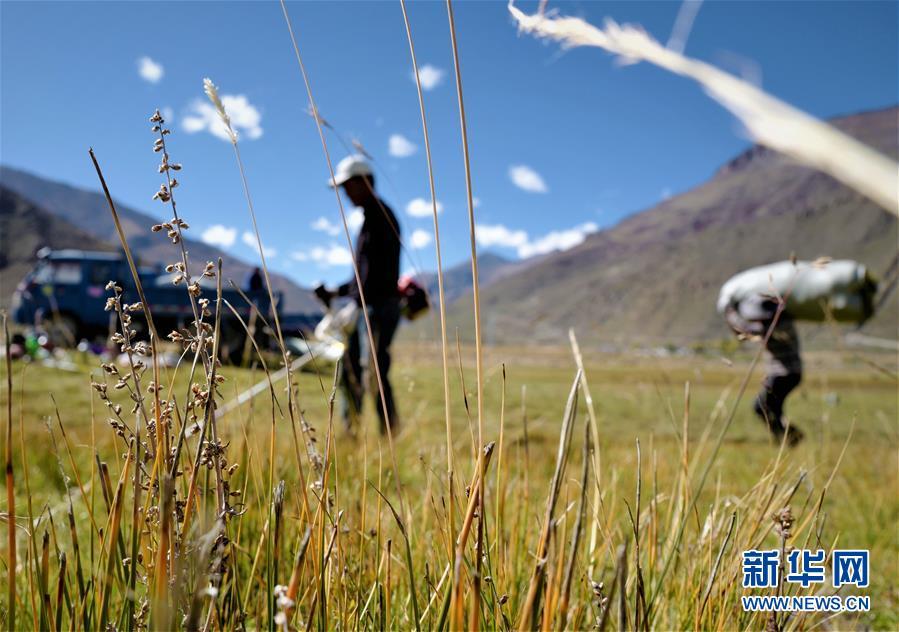 """(社会)(2)西藏:牧草丰收储""""冬粮"""""""