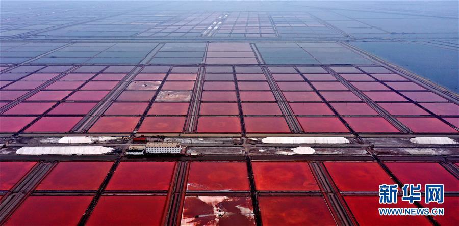 (环境)(6)海盐收获 缤纷如画