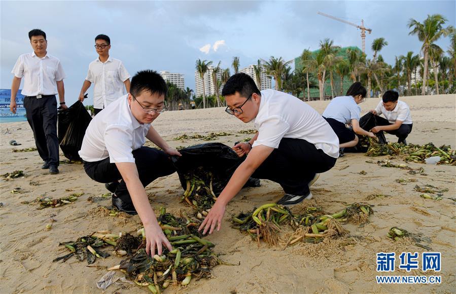 (社会)海南乐东:清理海滩垃圾  保护海洋环境