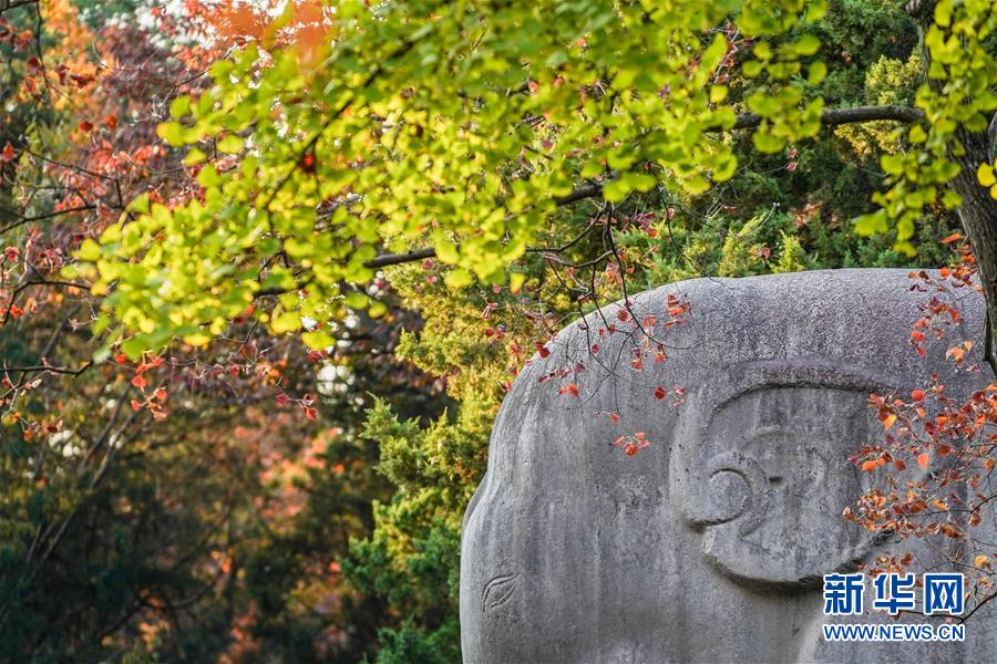(美麗中國)(5)金陵古道染秋色