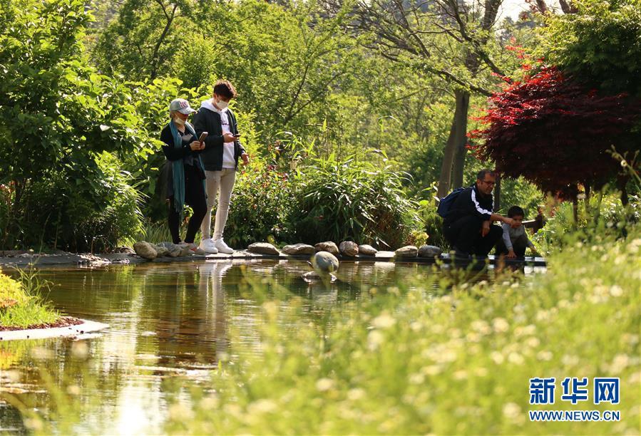 (新華網)(1)土耳其公園重新開放