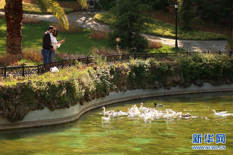 (新華網)(3)土耳其公園重新開放
