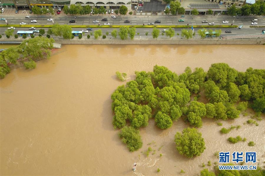 (防汛抗洪)(1)黄河出现2020年第2号洪水