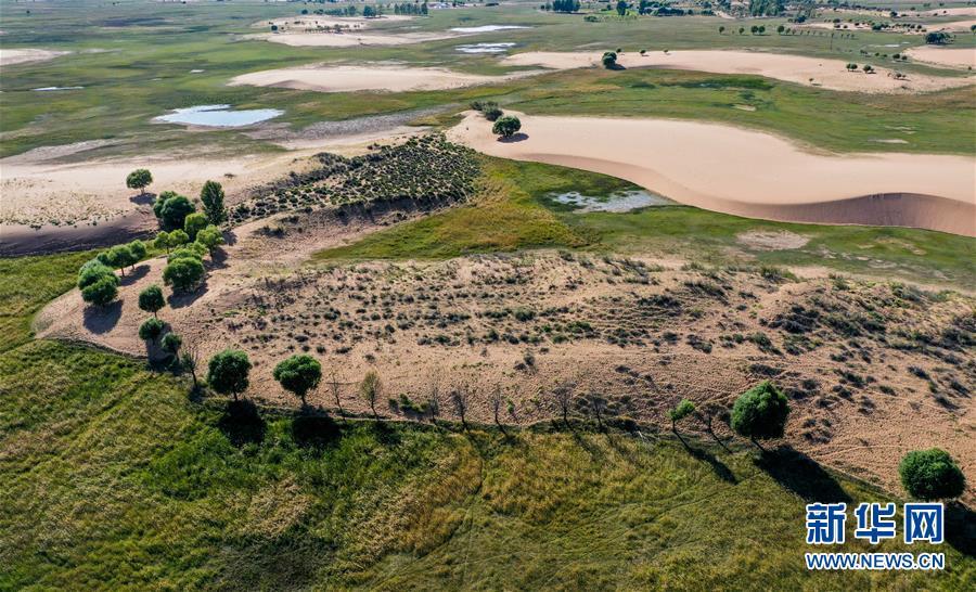(環境)(1)飛閱毛烏素 沙地變綠洲