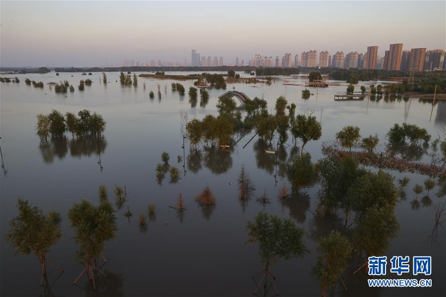 (环境)(1)松花江哈尔滨段超警戒水位