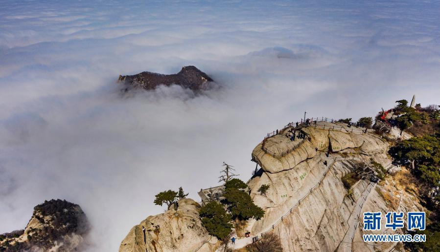 西岳华山:云海美如画卷