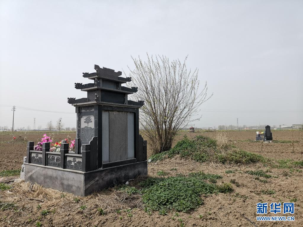 """安徽亳州:麦田""""长""""出豪华墓,农村公益性墓地建设需有序推进"""