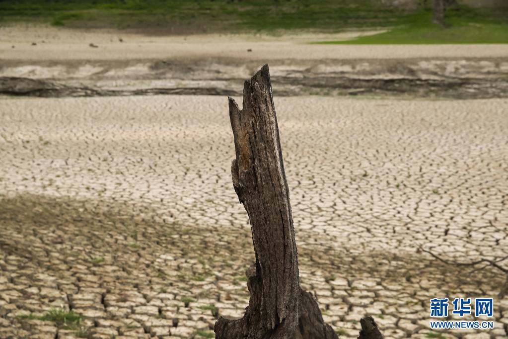 美国加州:愈发温暖干燥 雨季即将结束