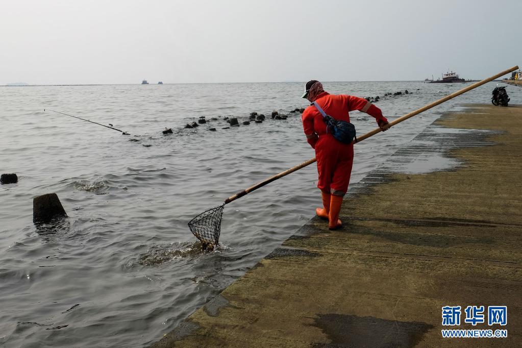 世界海洋日:印度尼西亚清理海岸