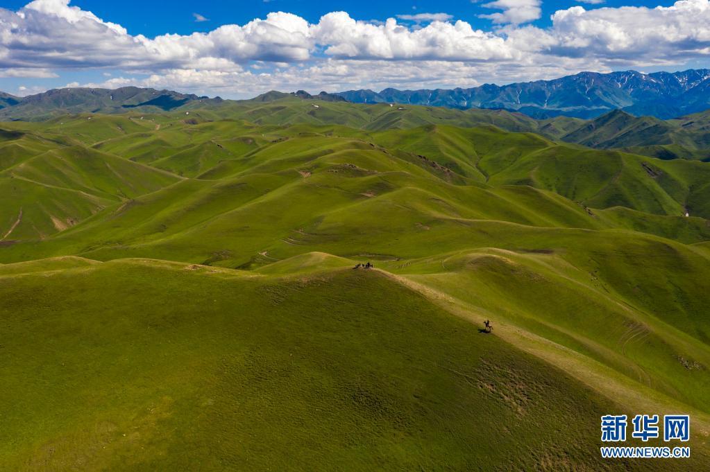 新疆裕民县:青山延绵好牧场