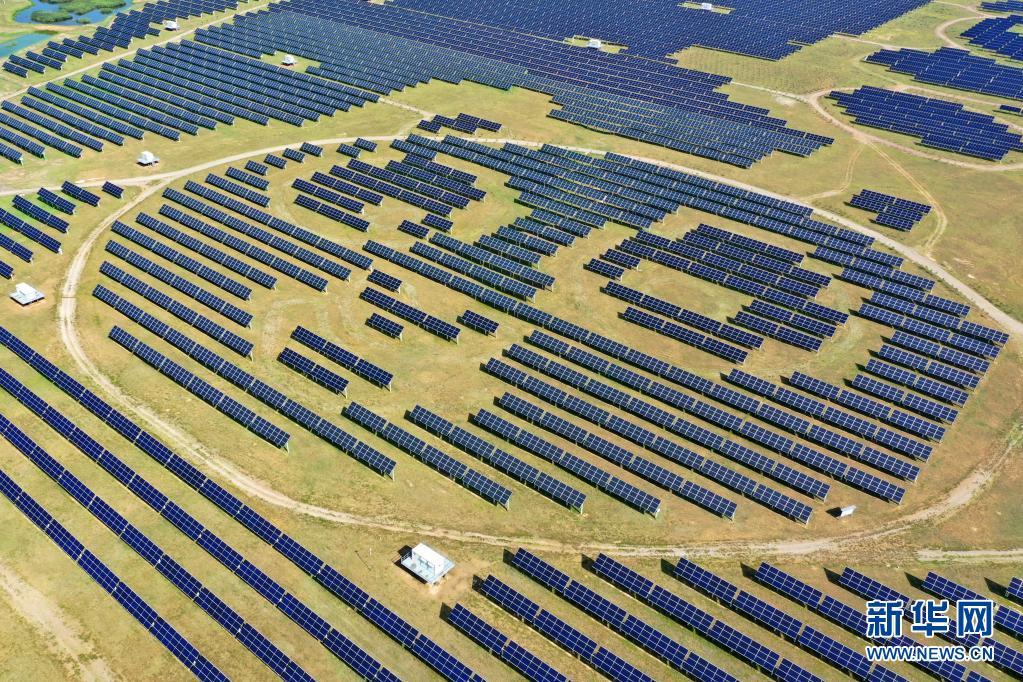 """盐碱地上的""""熊猫电站"""":年发电量达8000万千瓦时"""