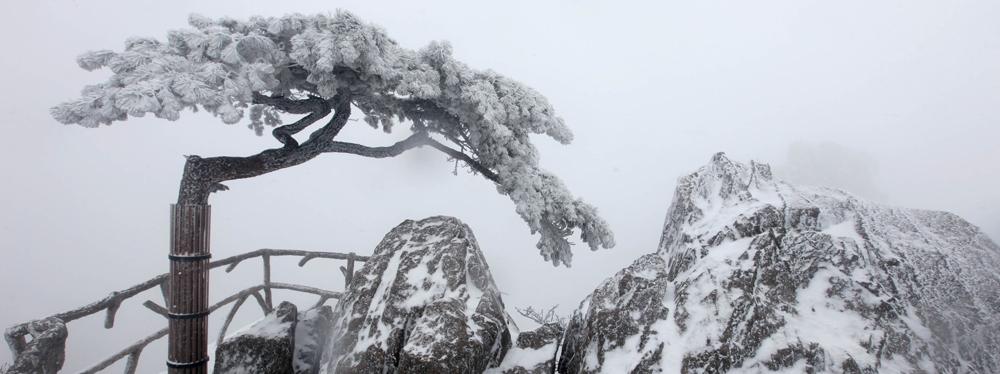 安徽黄山风景区迎来了新年首场大范围降雪
