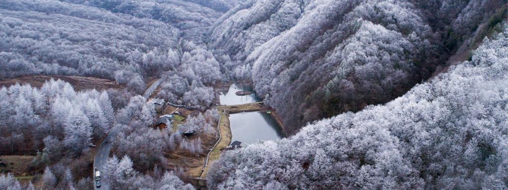 雪落神農架