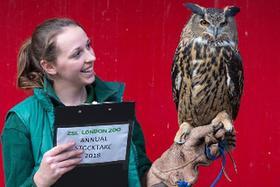 伦敦动物园举行年度盘点