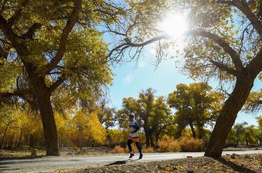 馬拉松——內蒙古額濟納穿越胡楊林國際馬拉松賽開賽