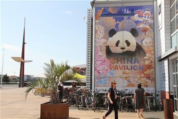 中國聯合展臺成法國國際陽光紀錄片節亮點