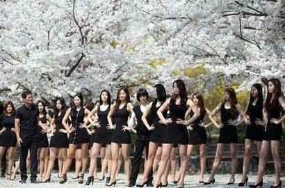 韓國模特櫻花樹下訓練秀長腿與花比美