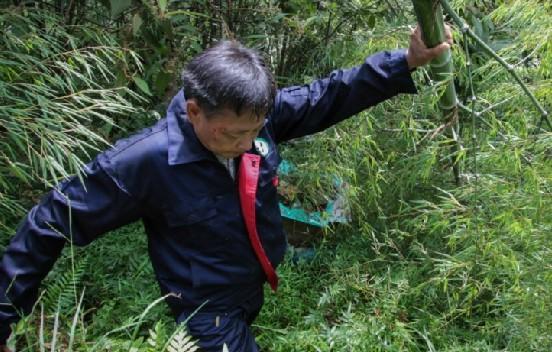 范夏平:為熊貓送竹子的人