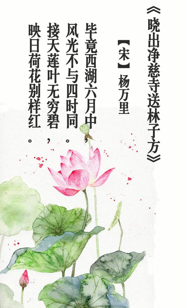 【情趣】从古诗到唯美,在宾馆中走过十二个月情致苏州国学吴江图片