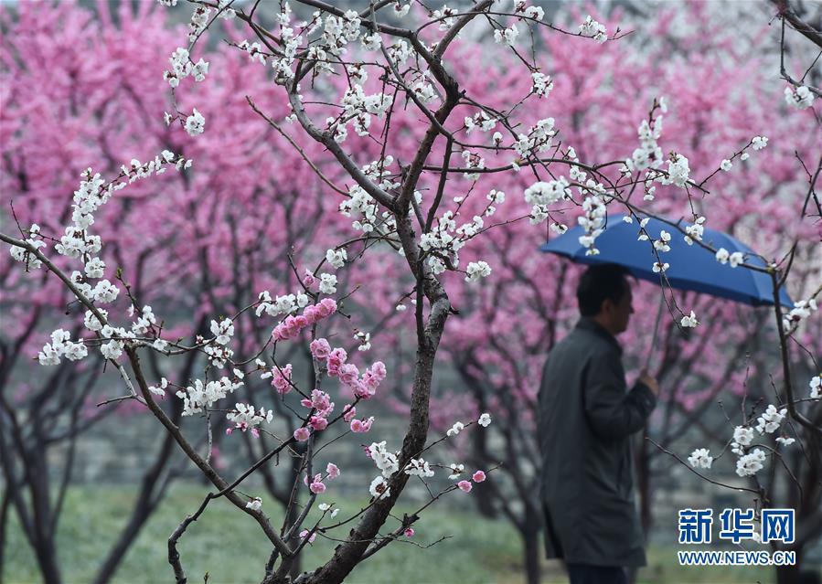 (環境)(1)北京:春雪或伴春雨至