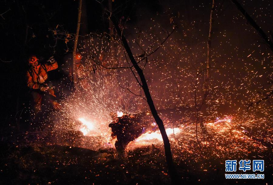 (突發事件)(1)內蒙古全力撲救大興安嶺北大河林場森林火災
