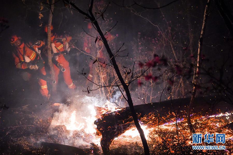 (突發事件)(5)內蒙古全力撲救大興安嶺北大河林場森林火災