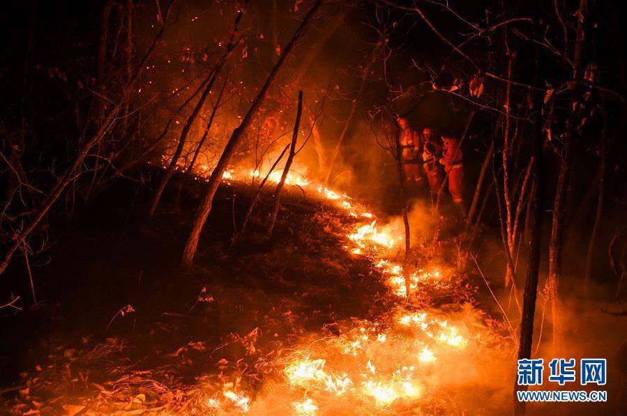 (突發事件)(9)內蒙古全力撲救大興安嶺北大河林場森林火災