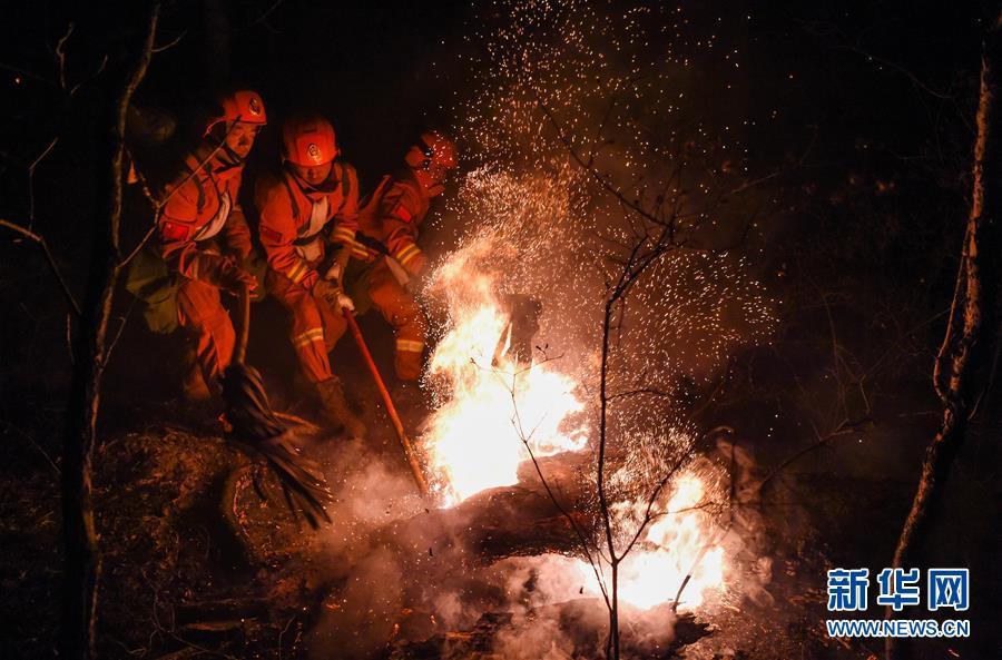 (突發事件)(6)內蒙古全力撲救大興安嶺北大河林場森林火災