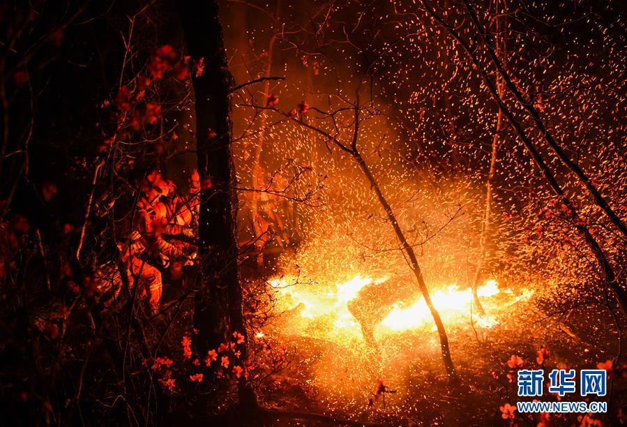 (突發事件)(7)內蒙古全力撲救大興安嶺北大河林場森林火災
