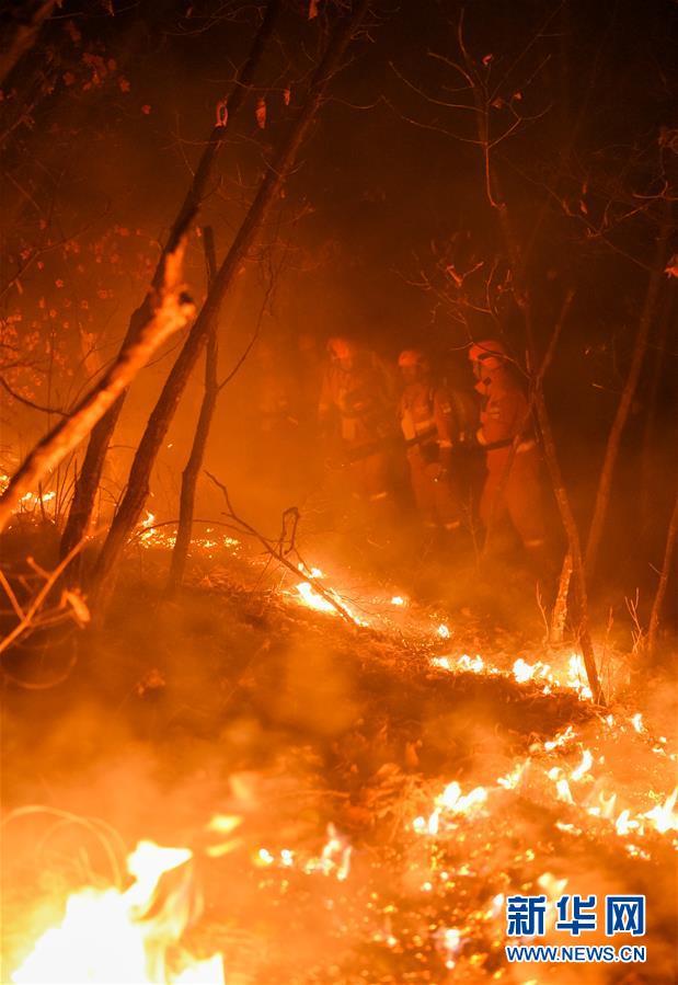 (突發事件)(8)內蒙古全力撲救大興安嶺北大河林場森林火災