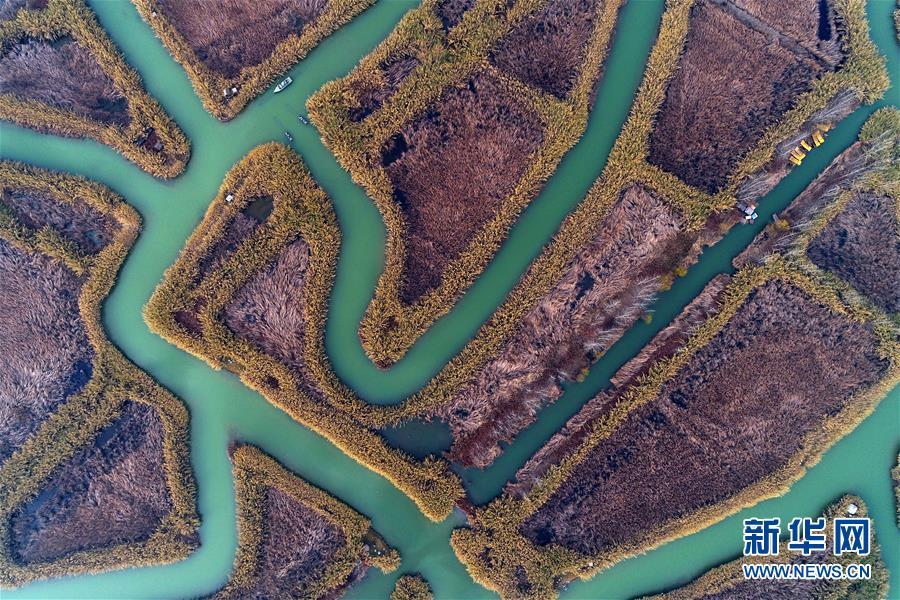 #(環境)(1)航拍冬日洪澤湖濕地
