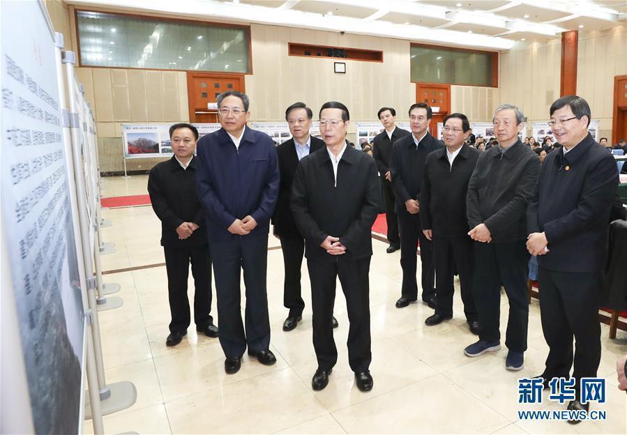 1月9日至10日,国务院副总理张高丽在安徽调研推动长江经济带发展工作。这是1月10日,张高丽主持召开推动长江经济带发展工作会议前听取介绍。新华社记者 庞兴雷 摄