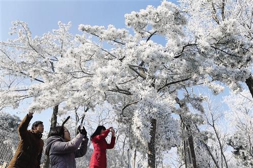 今年春运期间大部地区气温或偏高 对民航等影响较小